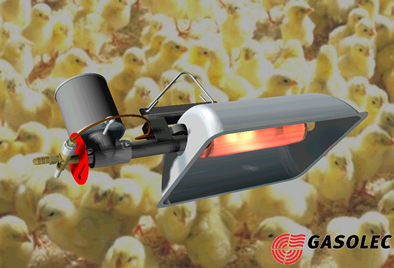 Where Is The Cheapest Gas >> Gas Heaters for Chicken Houses